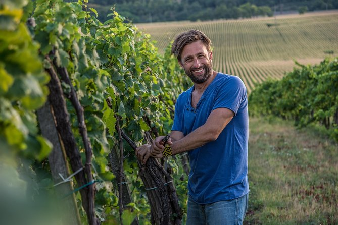 Tour Hungary's fabulous wine regions