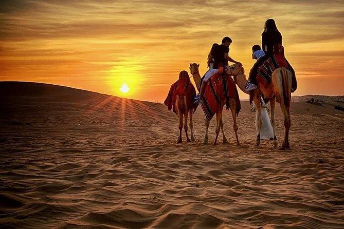 Quad Bike Self-drive & Camel Trekking Experience In Red Dunes Desert
