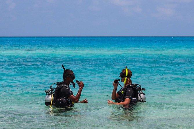 Diving (Intro) Hurghada