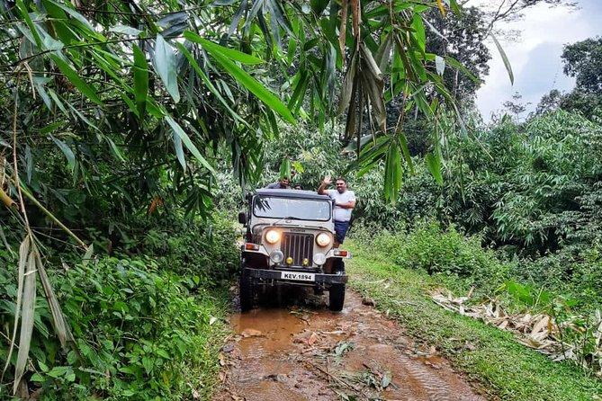 Munnar Mountain Jeep Safari