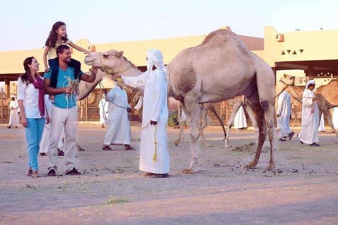 Al Ain City Tour from Dubai (Outdoor Activities )