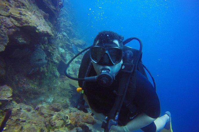 Diving Catalina Island