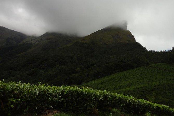 Trek to Lakshmi Hills, Munnar - A Guided Group Tour