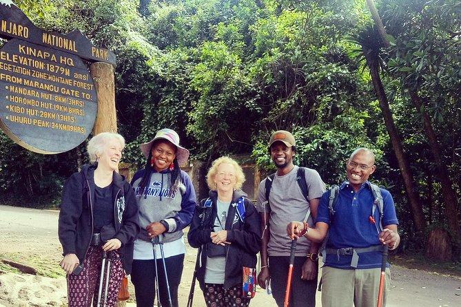 Kilimanjaro day hike.