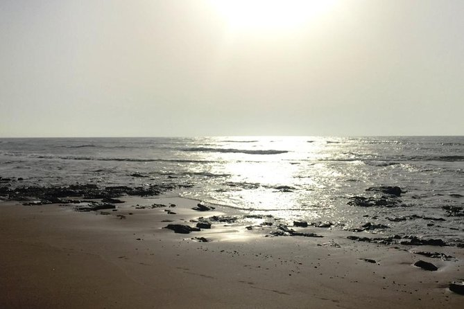 Day Excursion – Essaouira photo 6