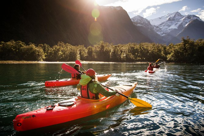 The Milford Sound Morning Kayak Tour