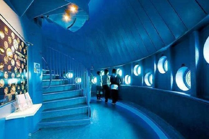 [20% discount] Kushimoto Marine Park Aquarium + Underwater Observation Tower Admission Coupon
