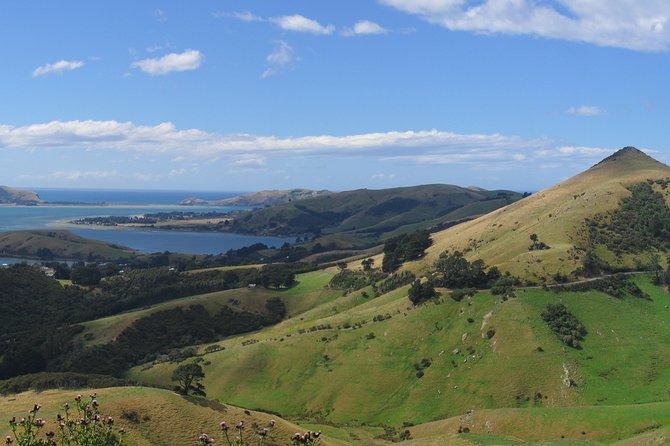 - Dunedin y la peninsula de Otago, NUEVA ZELANDIA