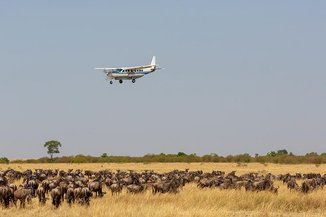 Ultimate Kenya Flying Safari Holiday in 10 Days