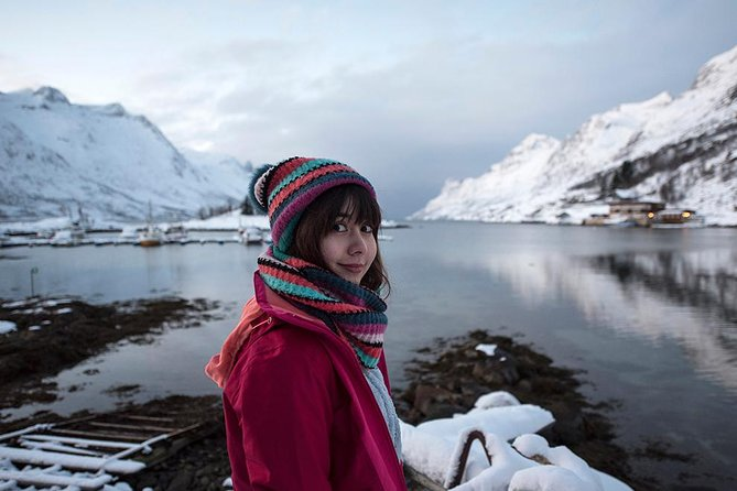 Small-Group Arctic Landscapes Sightseeing Tour from Tromso in Winter