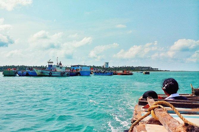 Ceylon Endearment (27 Days)