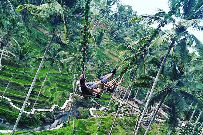 Jungle Swing & White Water Rafting Experience
