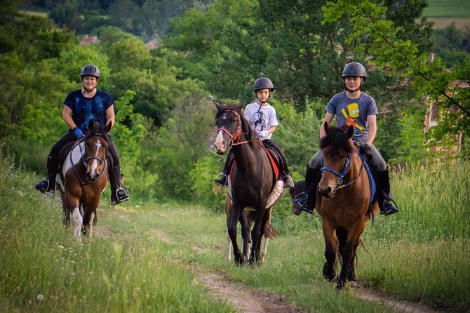 Nature Reserve Horse Riding and Picnic