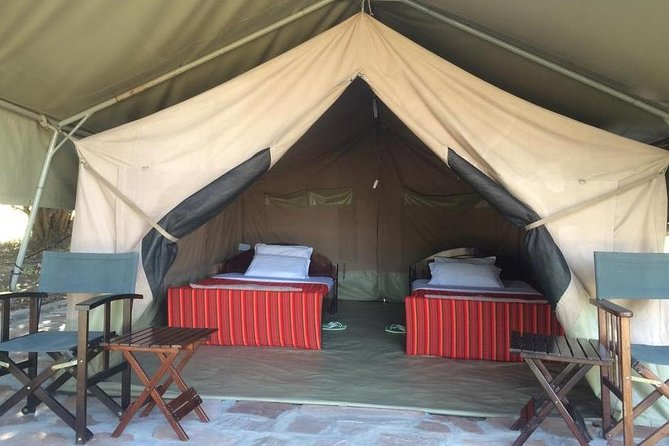 3 Days Masai Mara Budget Camping Safari Tour photo 1