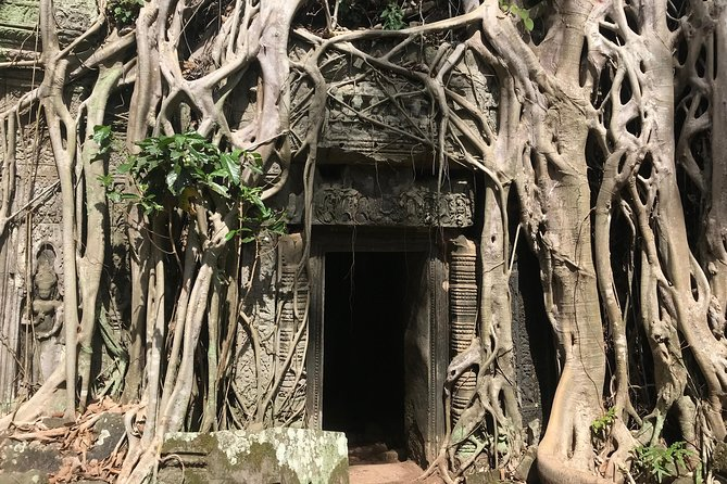 Private Angkor Two Days Temples Tour photo 11