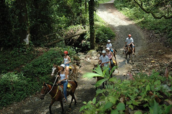 Horseback Riding Tour from Manuel Antonio photo 4