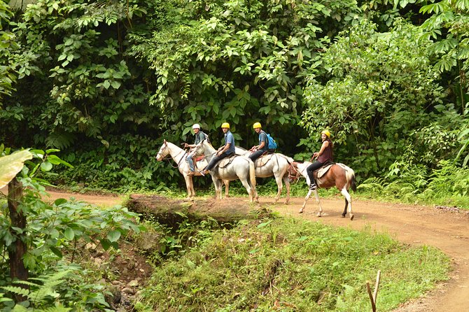 Horseback Riding Tour from Manuel Antonio photo 9
