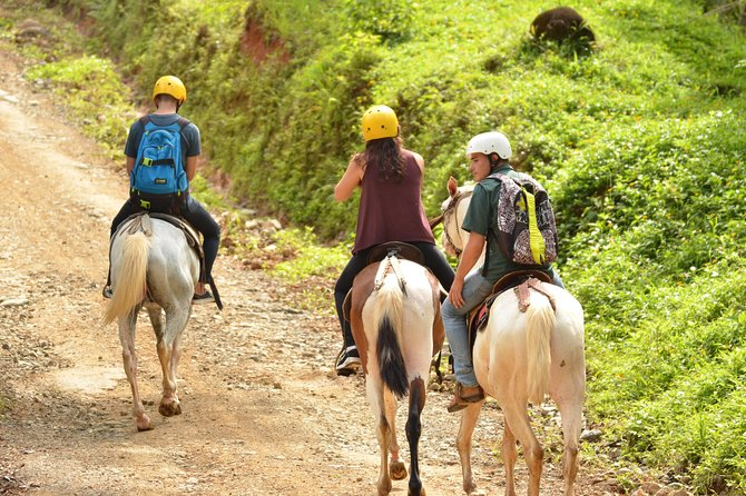 Horseback Riding Tour from Manuel Antonio photo 7