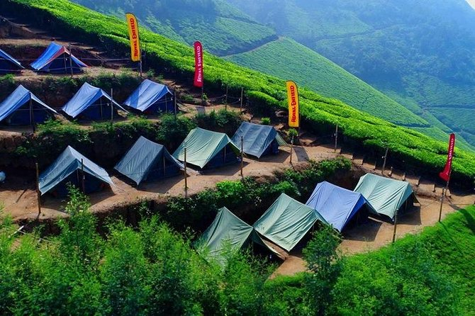 Camping in Munnar - With Included Dinner and Breakfast