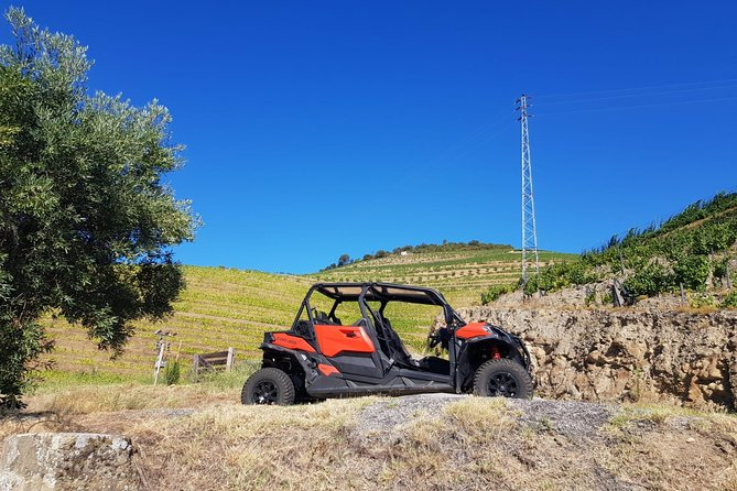 Buggy Douro Day Tour