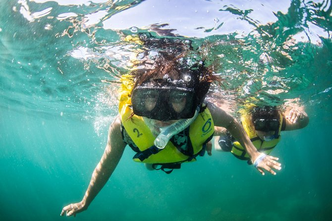 Snorkelling and Sailing with Lunch in Los Cabos