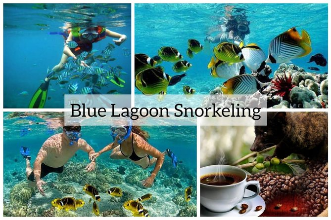 Bali Best Snorkeling at Blue Lagoon with All Inclusive