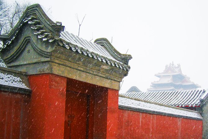 Private Beijing Forbidden City, Summer Palace, Tiananmen Square Day Tour