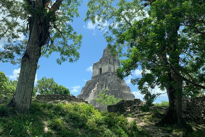 Discover Tikal, The Greatest Mayan City Of Guatemala By Air From Antigua