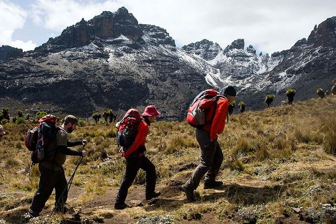 4 Days Mount Kenya Climbing Naro Moru Route Package