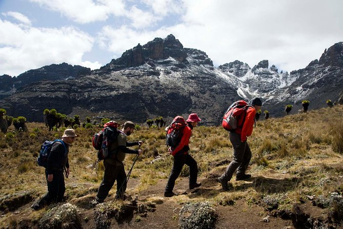 4 Days Mount Kenya Climbing- Naro Moru Route photo 12