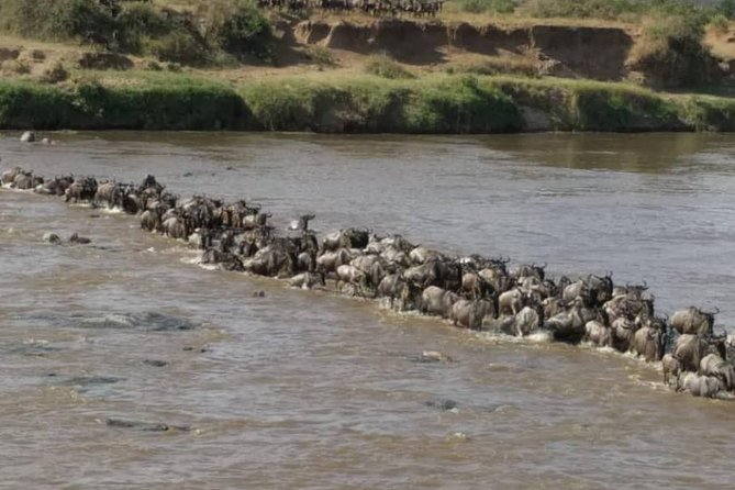 4 Days, 3 Nights Safari, Tarangire, Serengeti National Park, Ngorongoro Crater