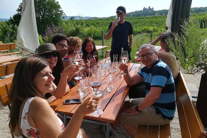 Half-day Countryside Wine Tasting tour near Vienna - Private Tour