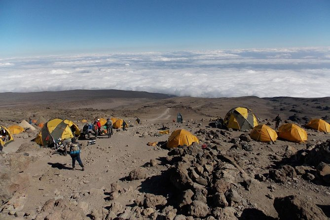 7 Days Mount Kilimanjaro Hiking- Rongai Route photo 9