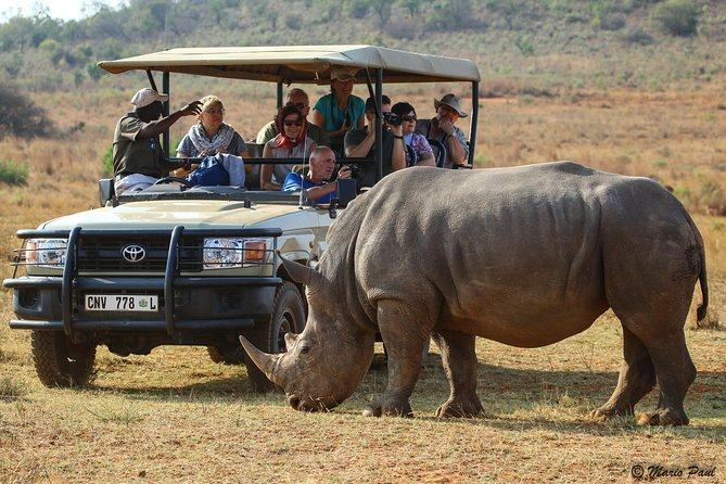 Photographic Day Trip into the Kruger National Park