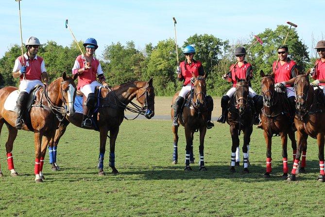 Horse & Polo in Windsor, UK