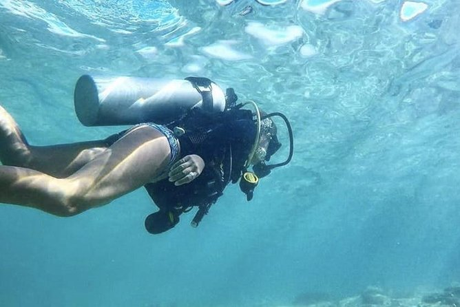 No Certification Required Guided Scuba Diving Tour photo 4