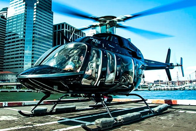 Private VIP New York City Helicopter Tour and Luxury SUV