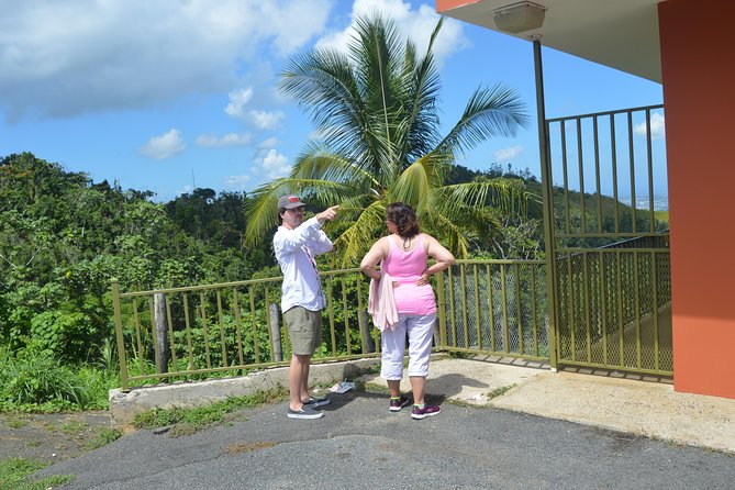(cruise ship travelers) Center of Puerto Rico Day tour