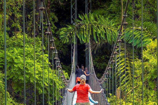 Mistico Arenal Hanging Bridges