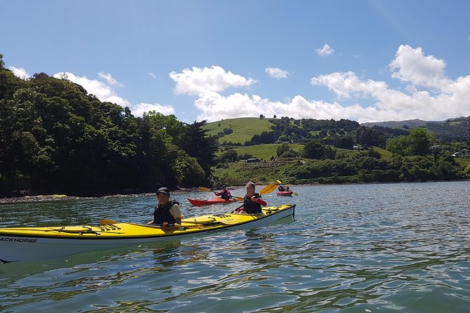 Sea Kayaking Christchurch, Lyttelton Harbour & Quail Island