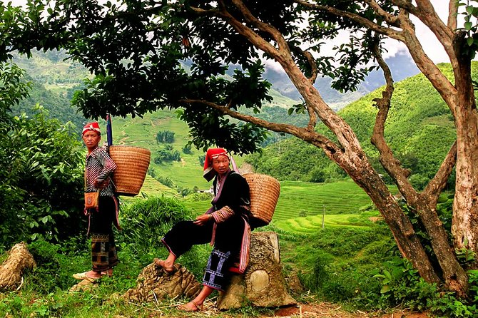 Sapa Easy Trekking Tour 1 Day - Rice Paddies and Cultures