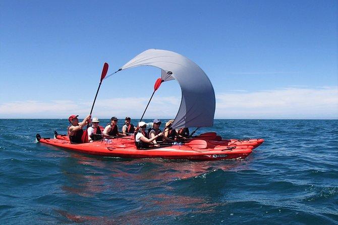 Kayak Sailing
