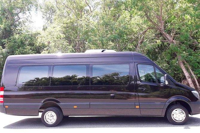 Sprinter Minivan transfers from PUJ to Punta Cana & Bavaro Resorts