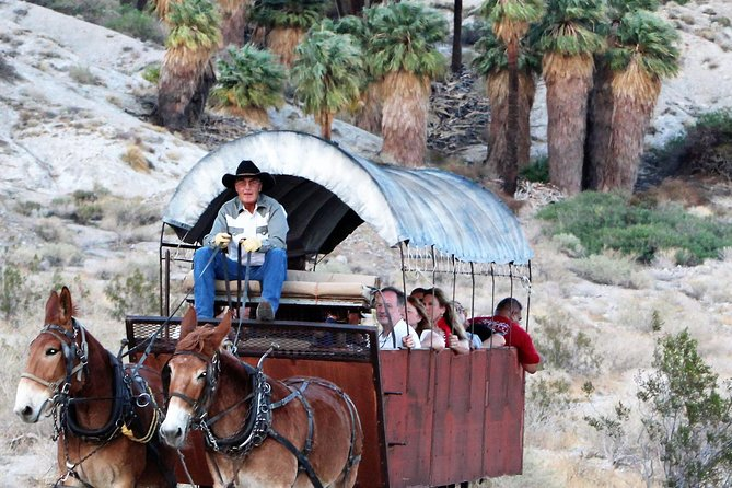 Wagons pulled by mules - An American Pioneer Adventure!