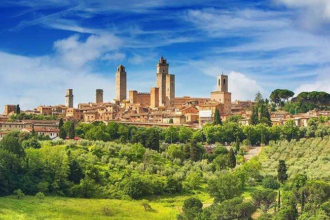 Small-Group Vernaccia di San Gimignano Wine Tour - White and Red Wines