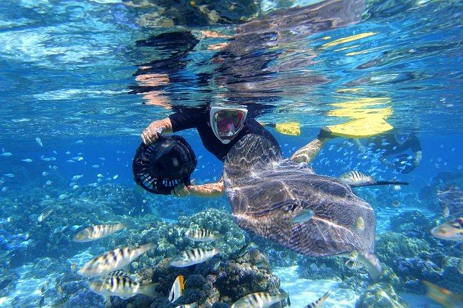 Lagoonarium / Eco Sea Scooter Snorkeling tour