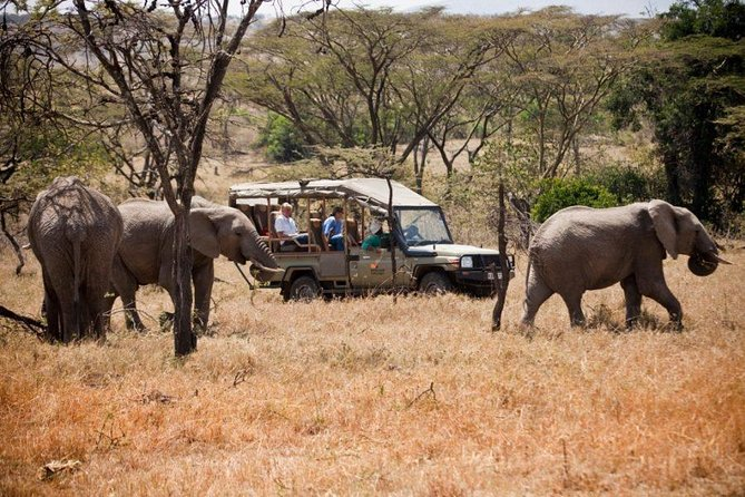 9 Days Kenya Family Safari Holiday Packages photo 8