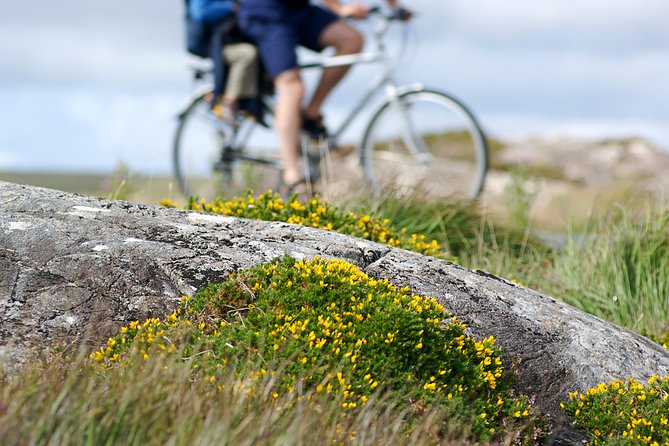 E Bike the Wild Atlantic Way from Galway. Self guided. Full day.