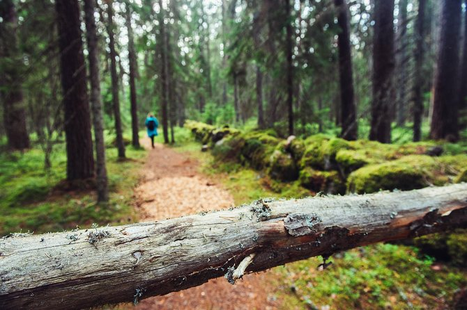Guided Walking in the Baltic States in 14 Days