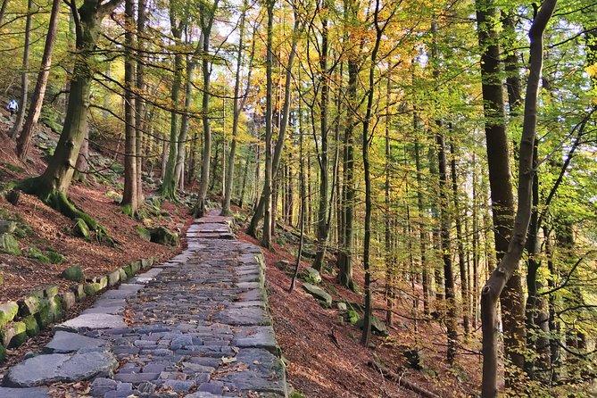 GUIDED TOUR: Hiking to Stoltzekleiven
